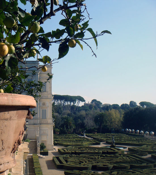 Orange Trees, Villa Doria Pamphilj