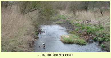 in order to fish