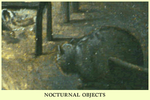 nocturnal objects