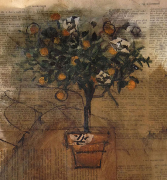 Orange Tree, Matthew Roy Coleman