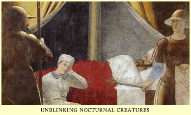 unblinking nocturnal creatures